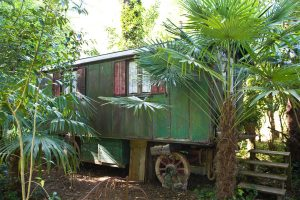 Gîte de charme en roulotte ancienne